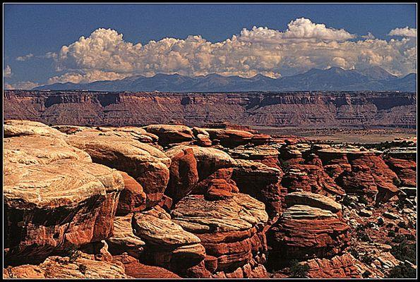 Canyonlands - Needles
