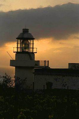 Capo Faro, Salina
