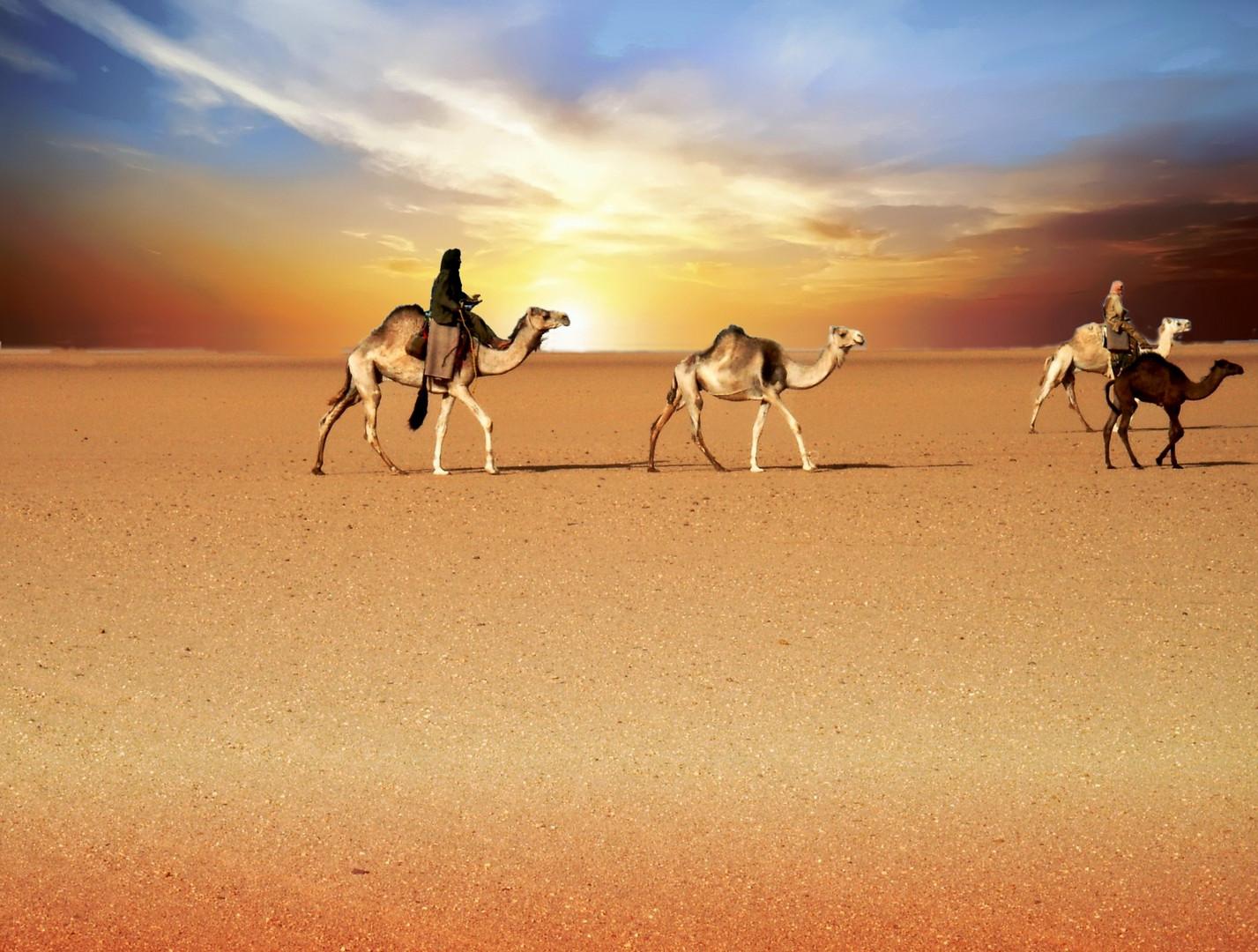 caravane au coucher de soleil