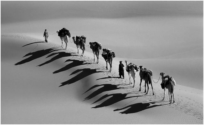 caravane des ombres