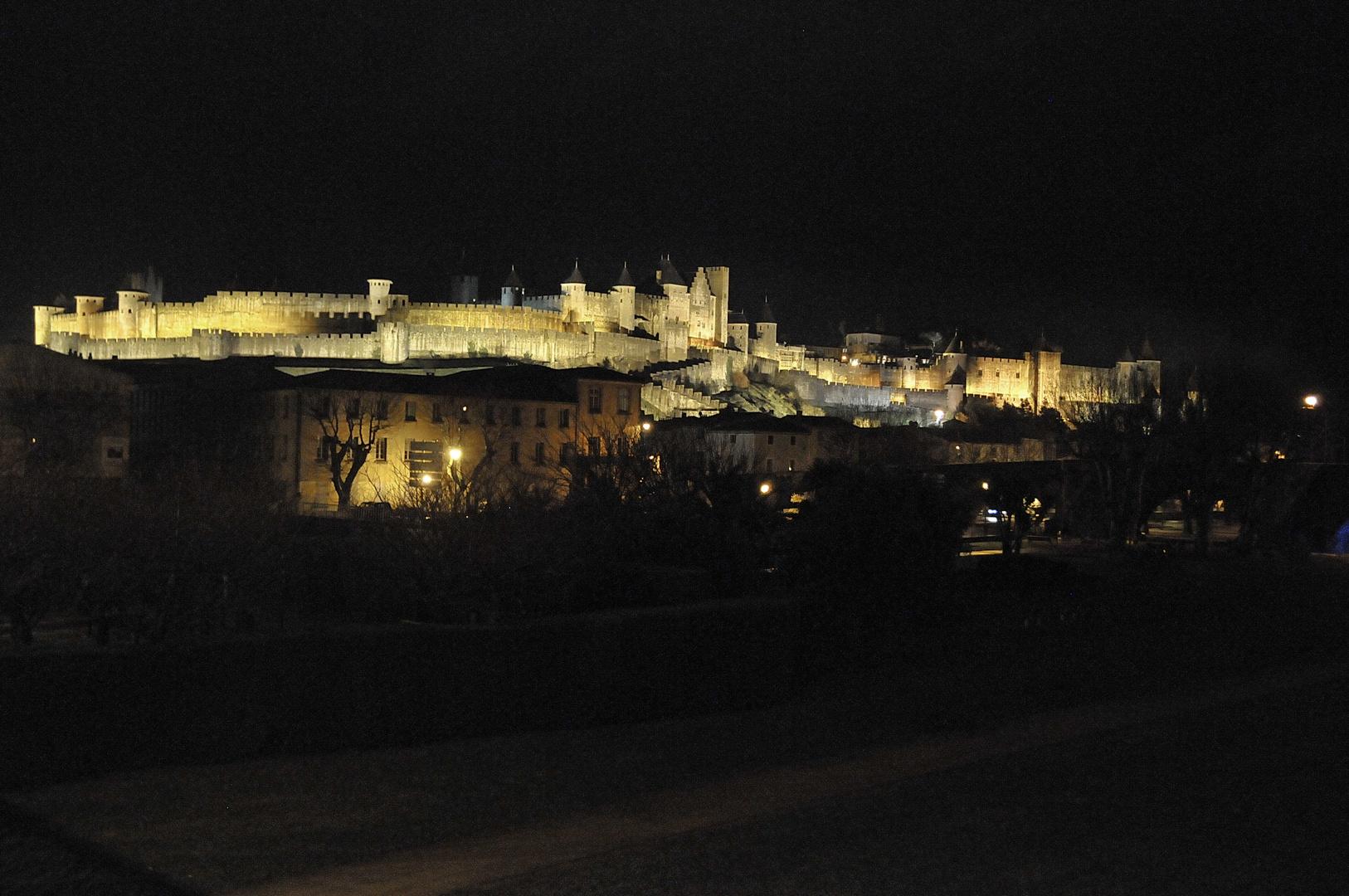 Carcassonne Janvier 2011 (1)