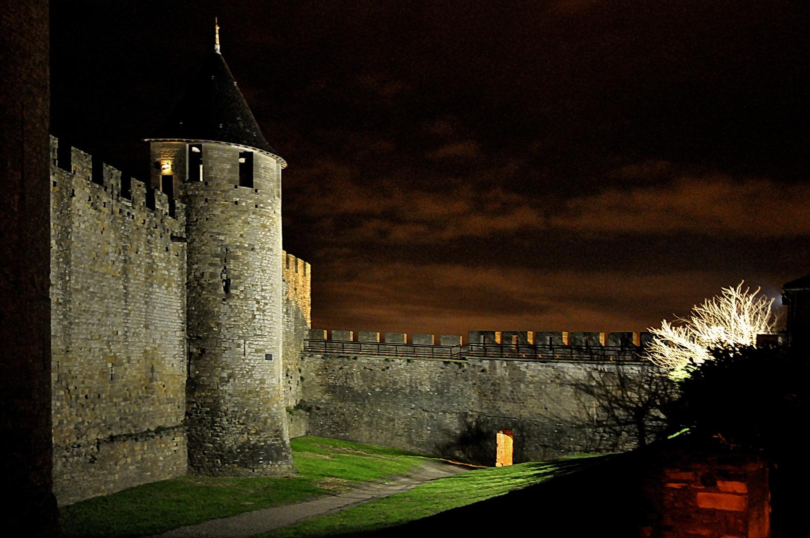 Carcassonne Janvier 2011 (2)