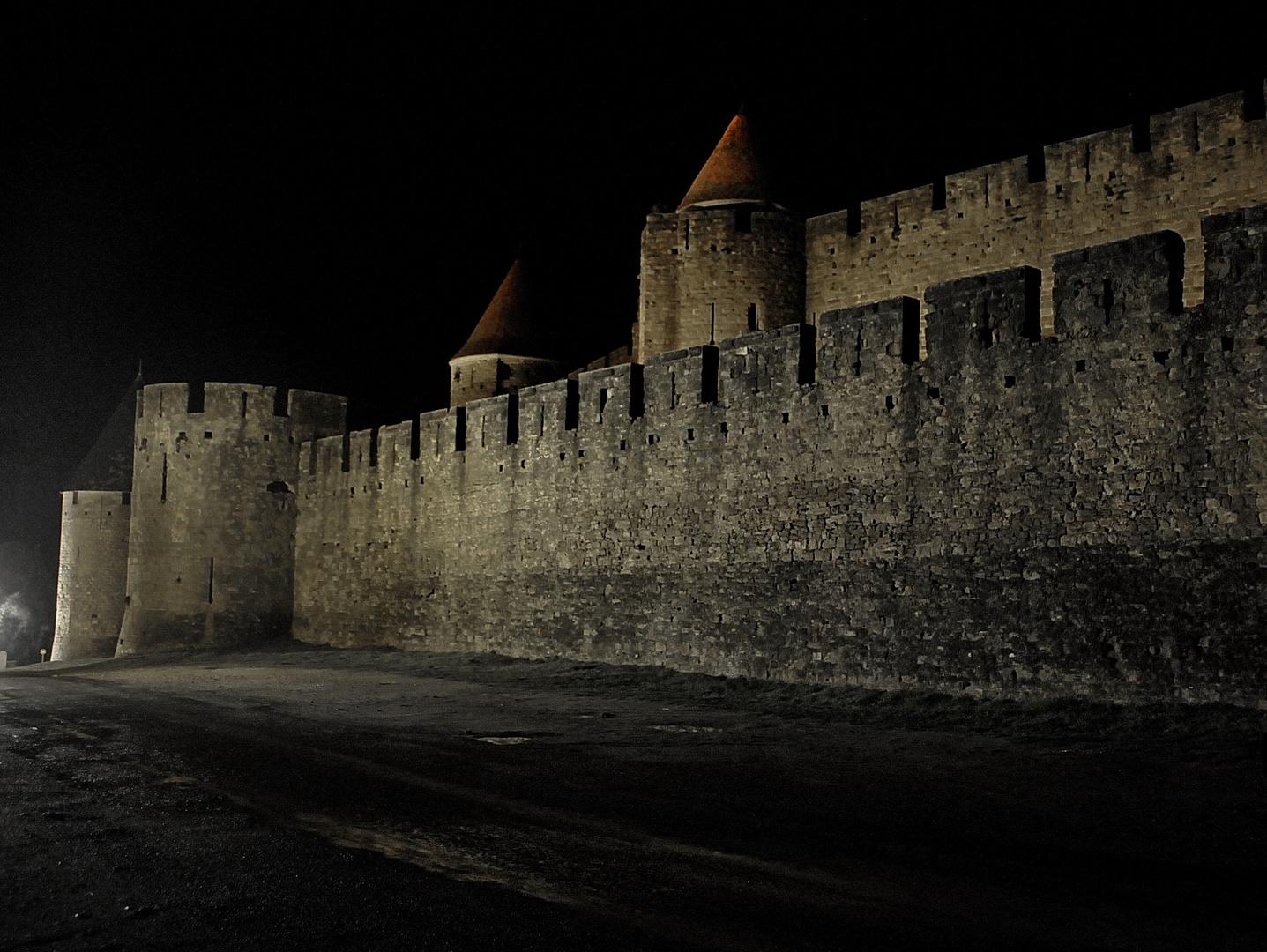 Carcassonne Janvier 2011 (3)