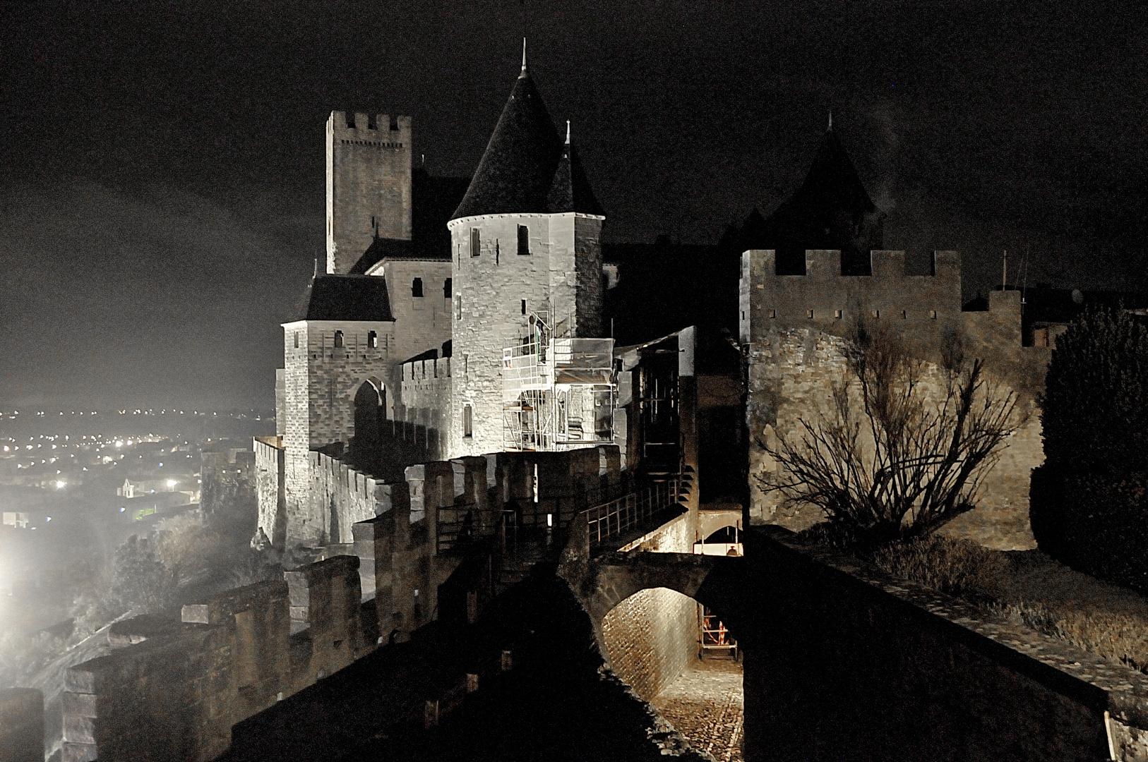 Carcassonne Janvier 2011 (4)