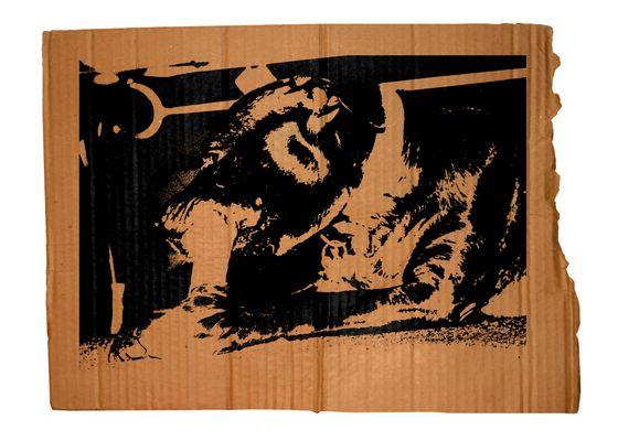 Cardboard Series #3