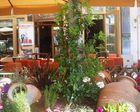 Cardhu Cafe
