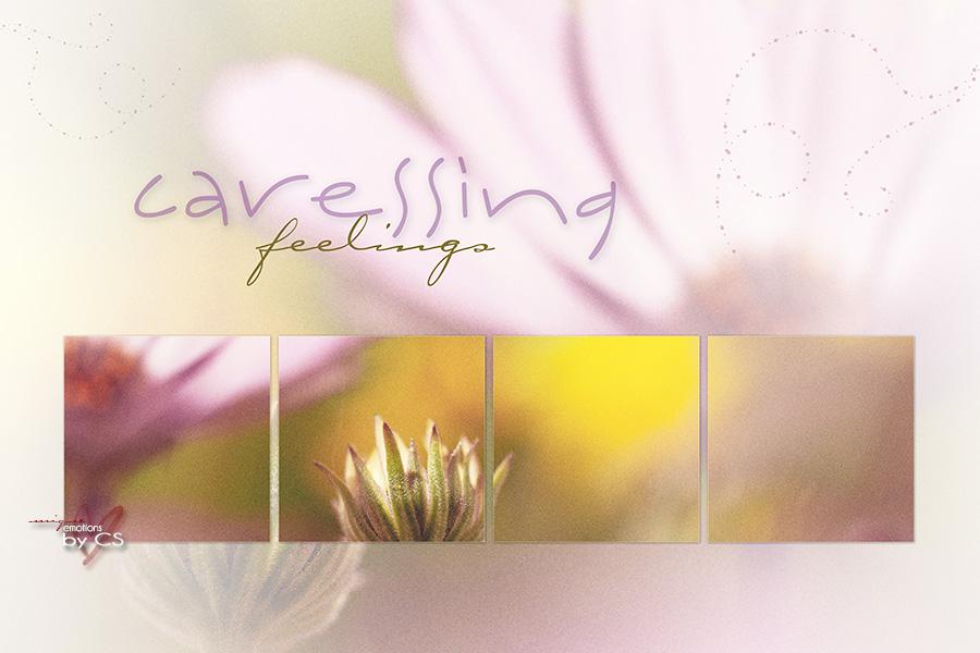 *** caressing ... ***