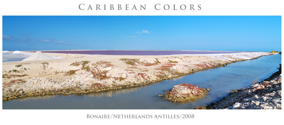Caribbean Colors #07