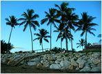 Caribean View II