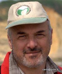 Carlo Gulin