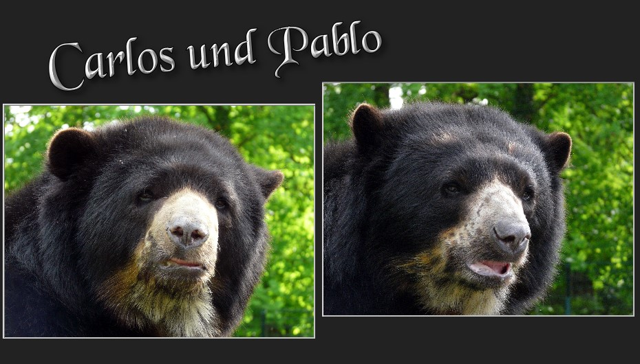 Carlos und Pablo...