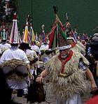 Carnavales de Ituren y Zubieta.