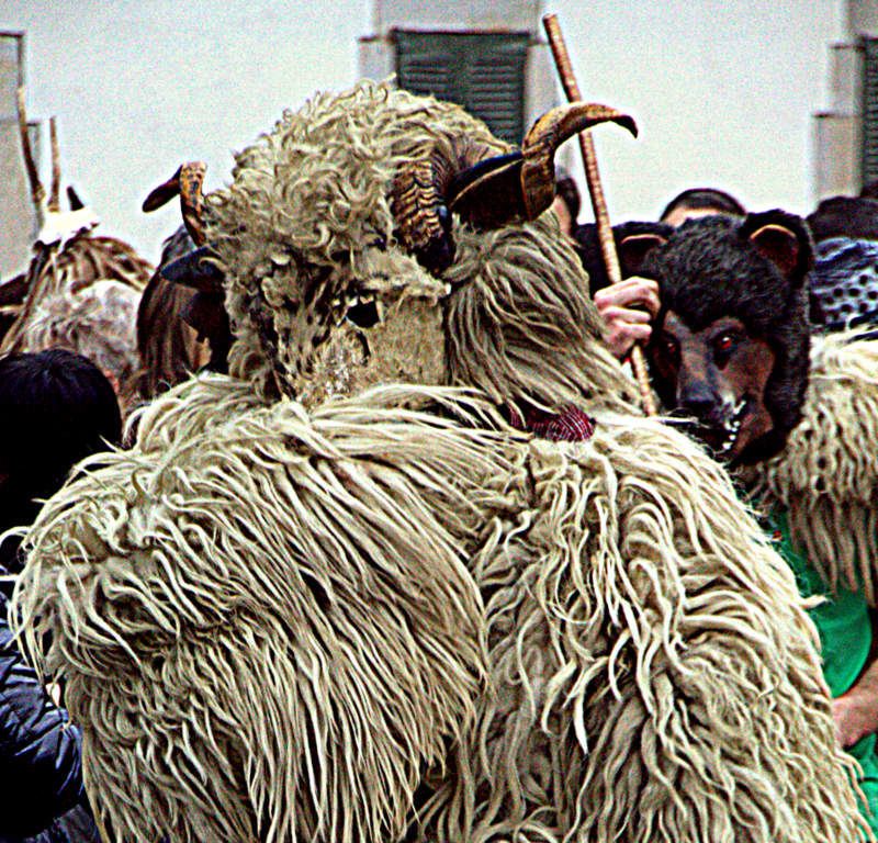 Carnavales Navarra.