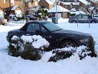 Carols Car dug out