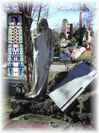 Carpe diem und Falcos Grab - Wien