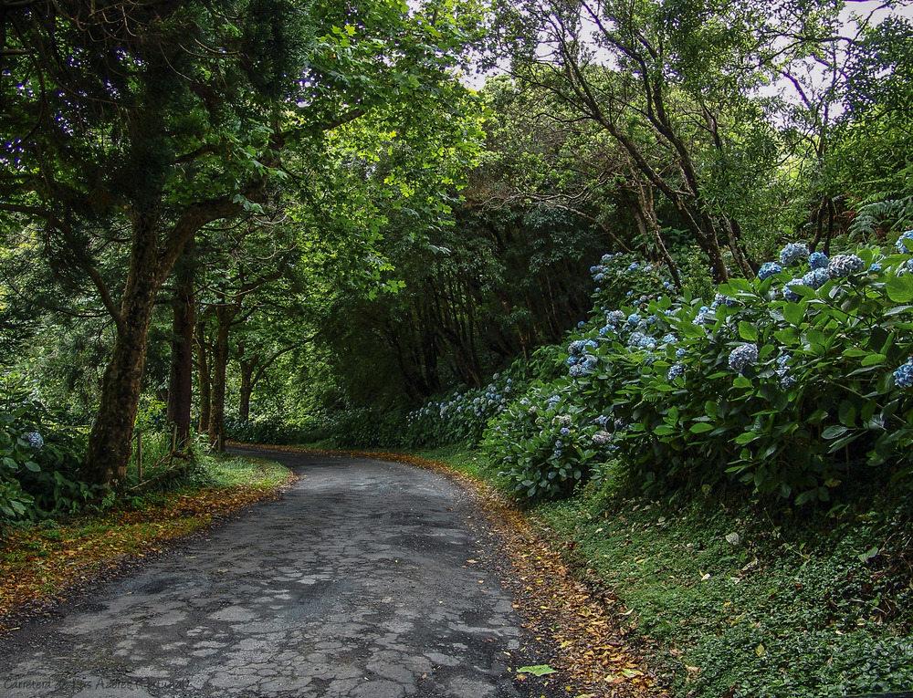 Carretera de Las Azores (Portugal)