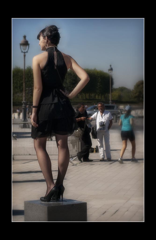Carroussel du Louvre.