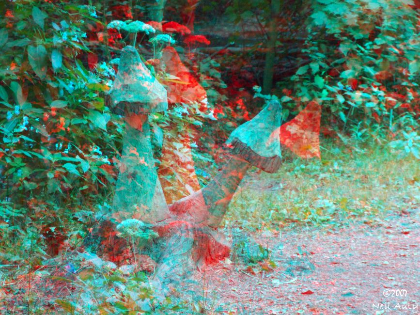 Carved Fungi - Anaglyph #2