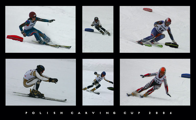 Carving Cup 2006