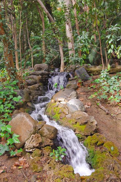 Cascada Parque la Concepcion
