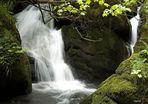 Cascadas en Saliencia