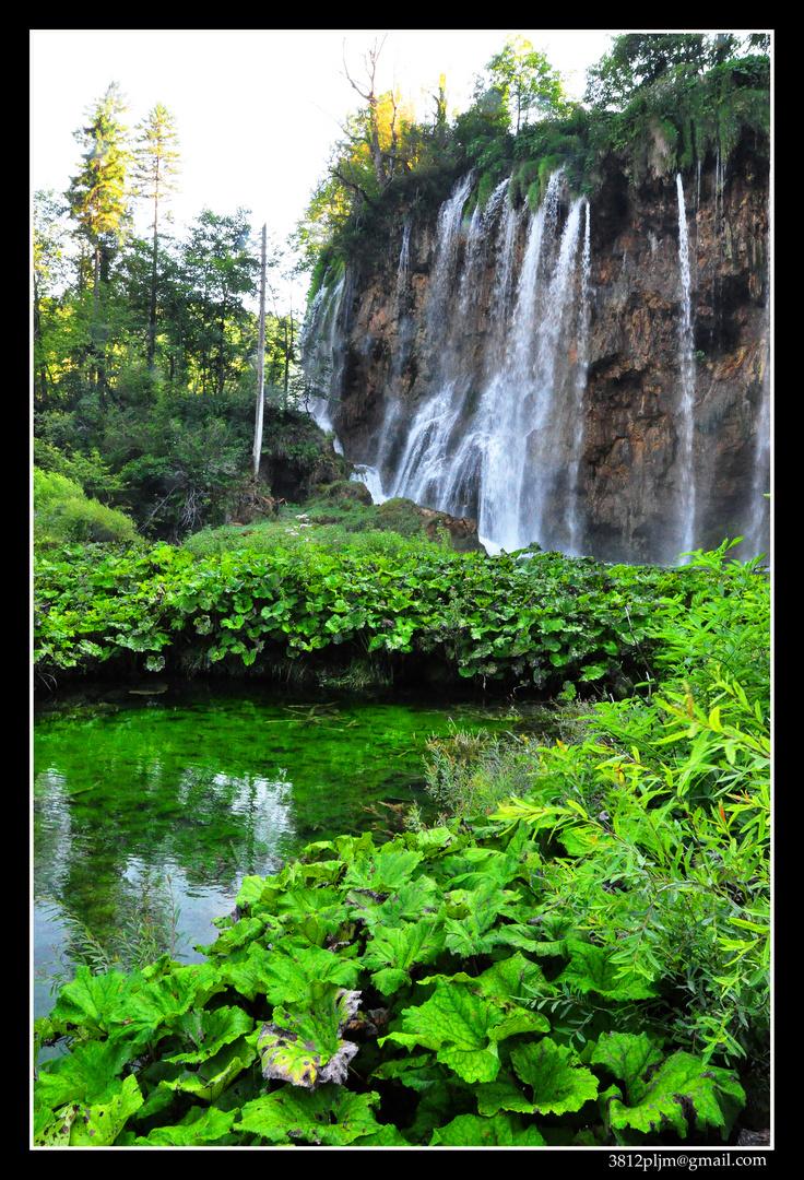 Cascadas vírgenes