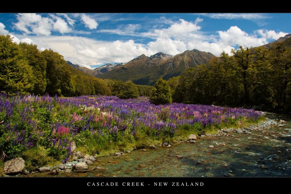 Cascade Creek , New Zealand