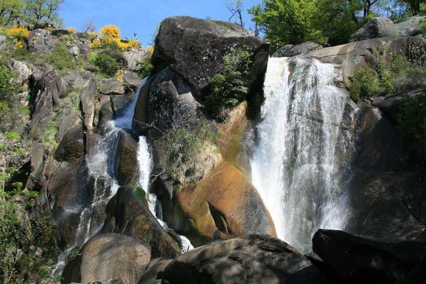 cascade tarnaise
