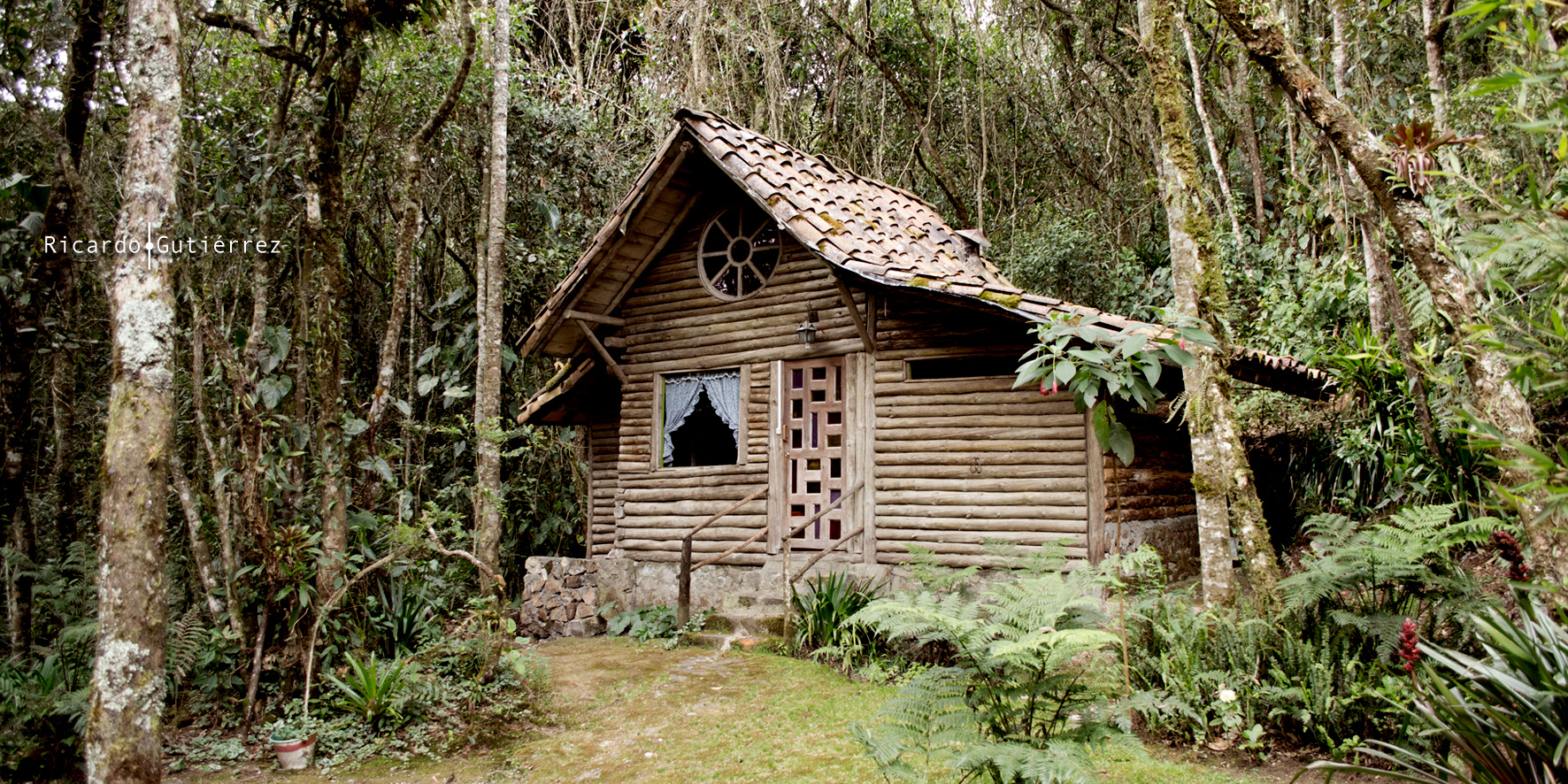 Casita en el bosque imagen foto south america - Casitas en el bosque ...