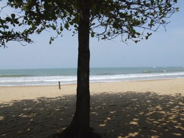 Castelhano's beach