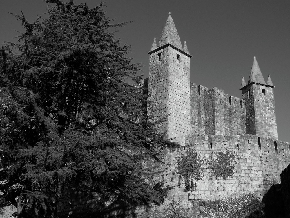 castelo(chateaux) santa maria feira-portugal
