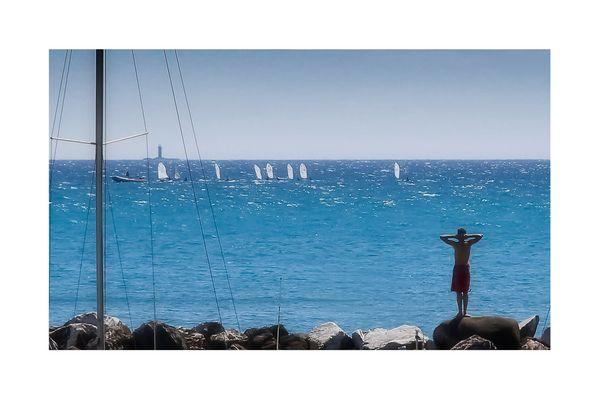 Castiglioncello & Dintorni n. 05 - La scuola di vela