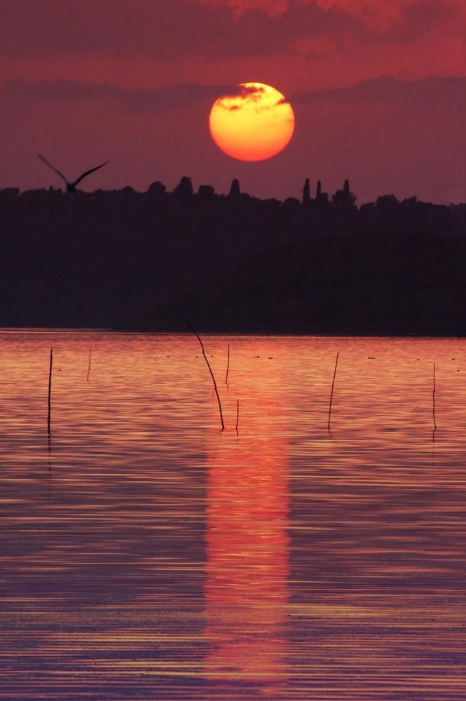 Castiglione di Lago