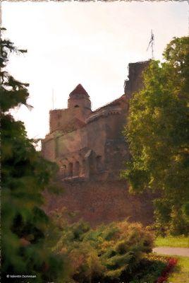 Castle Beograd