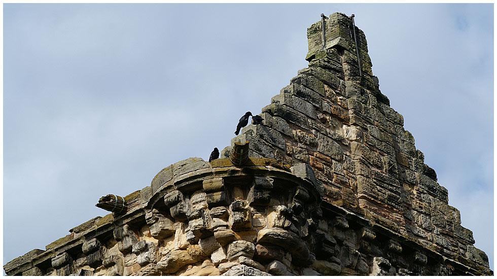 Castle St. Andrews / Schottland : Detail