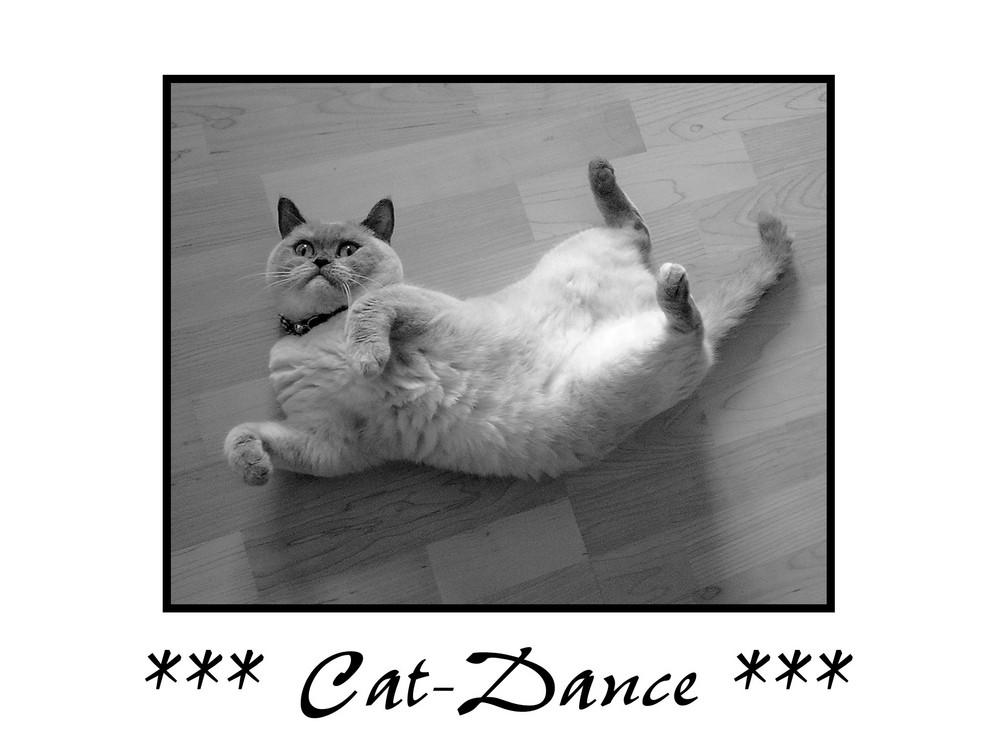 *** Cat-Dance ***