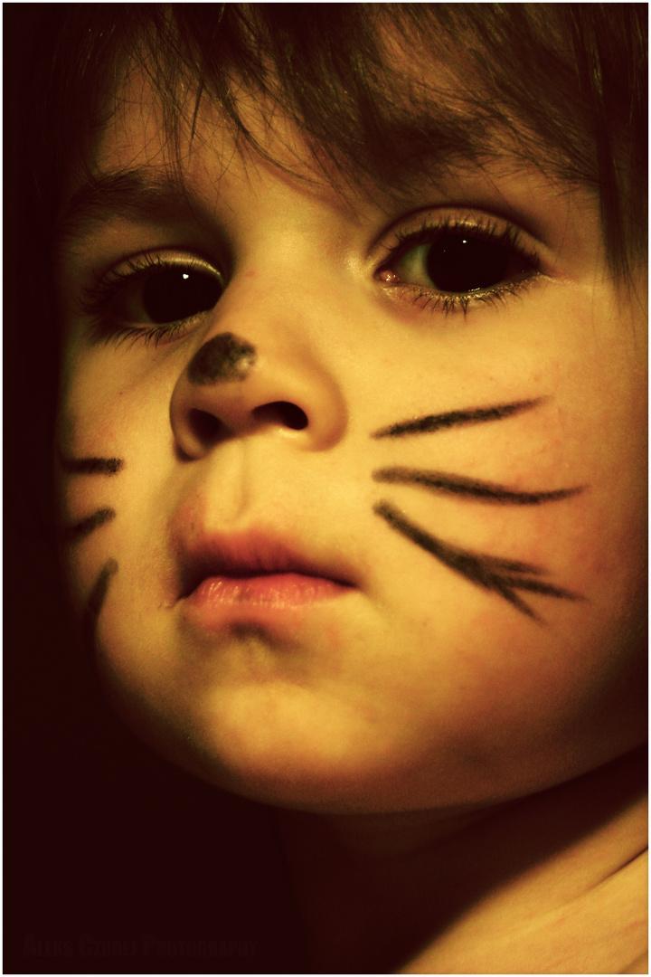 Cat Kid