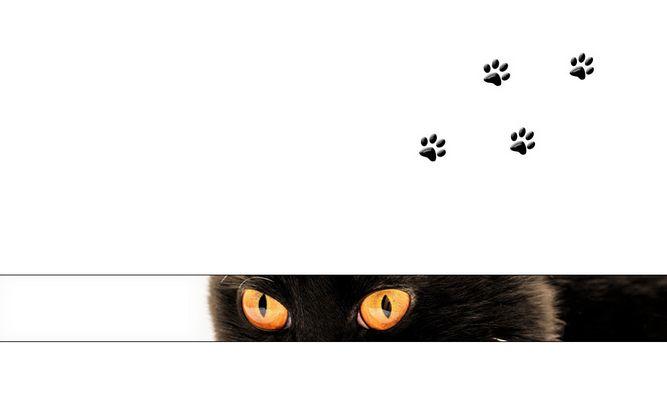 cat-strip