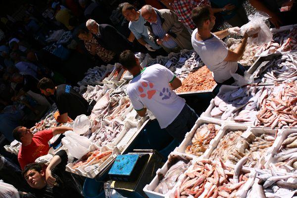 Catania, mercato del pesce