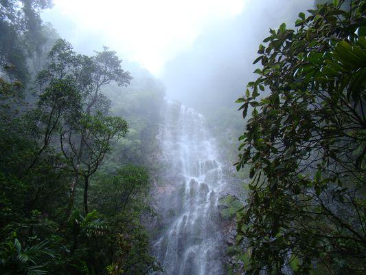 Catarata en Montaña La Tigra , Honduras