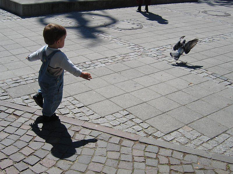 Catch the Bird Kid