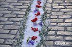 Catifa de flors sobre llambordes