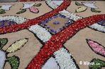 Catifes de flors