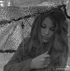 Cati.Schirm
