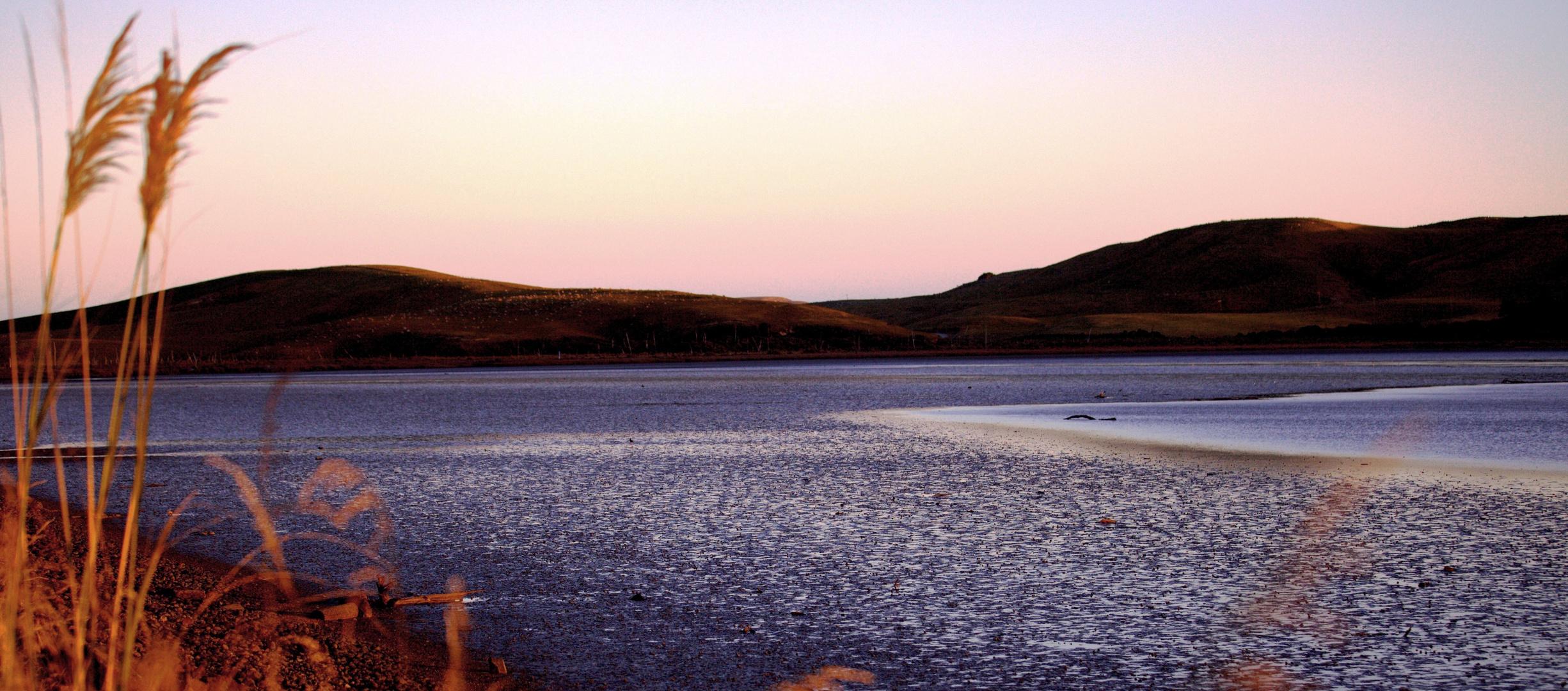 Catlins (Haldane Bay)