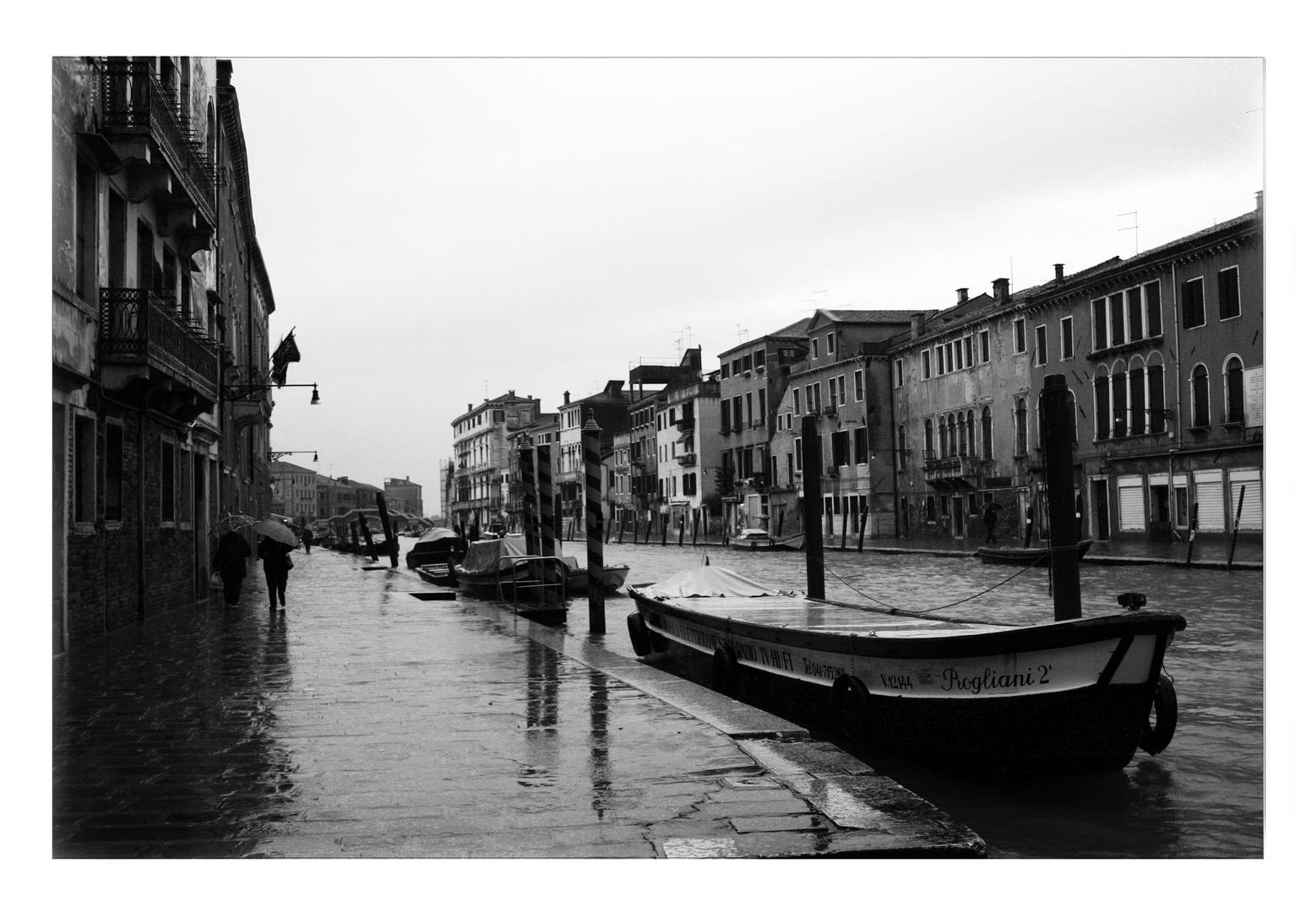 caught. in Venice II