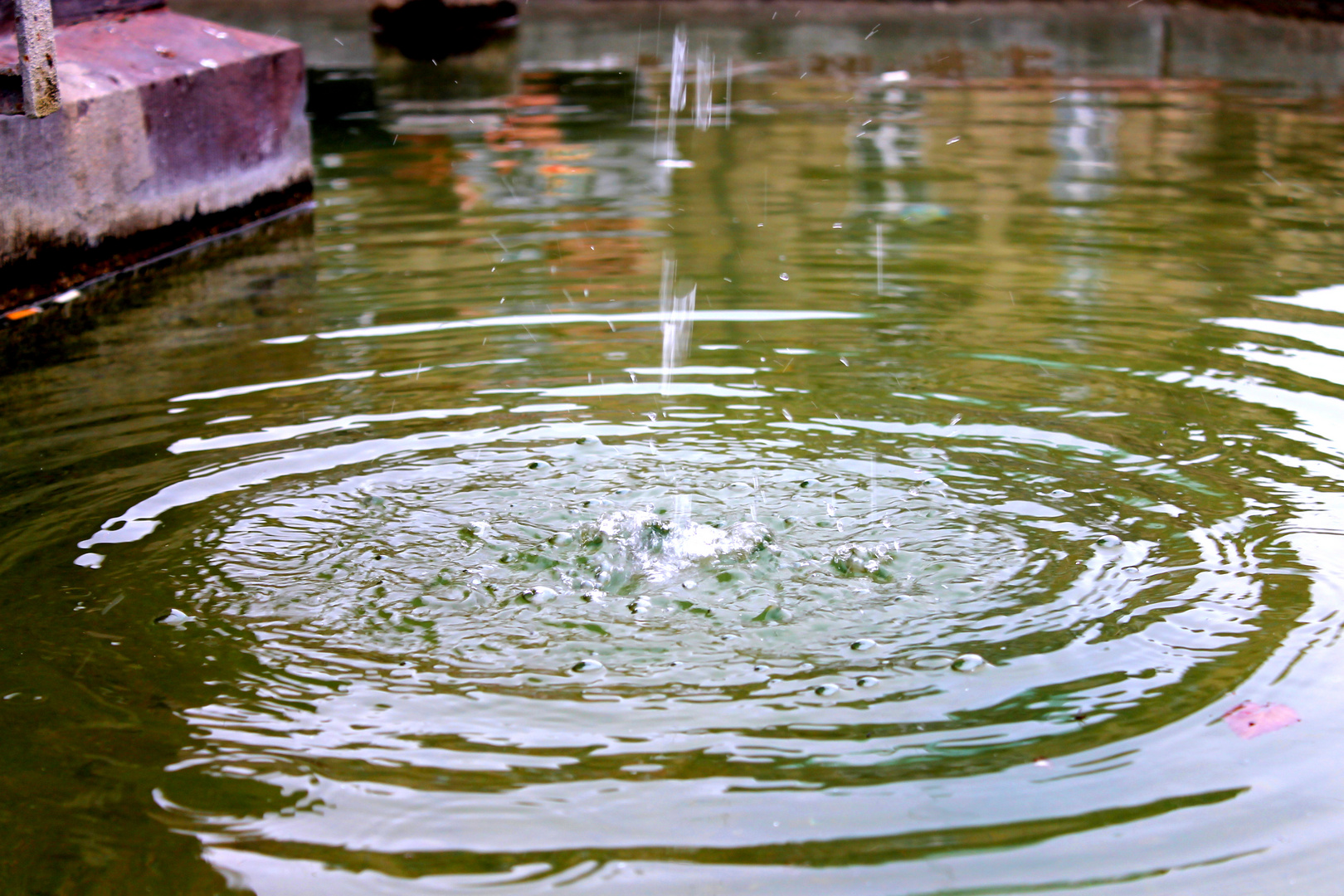 Causa del agua