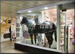 ..cavallo in vetrina..