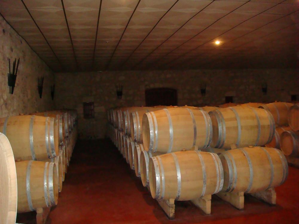 cave dans le médoc..... qui veut gouter au bon vin ?
