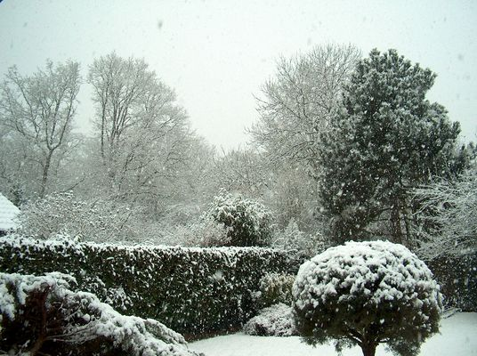 Ce matin 20 février 2010